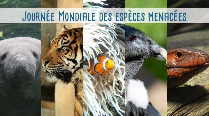 journ_e_mondiale_des_especes_menacees