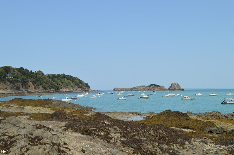 190723_cancale_4