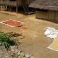 Laos, Luang Prabang à Vengviang 297