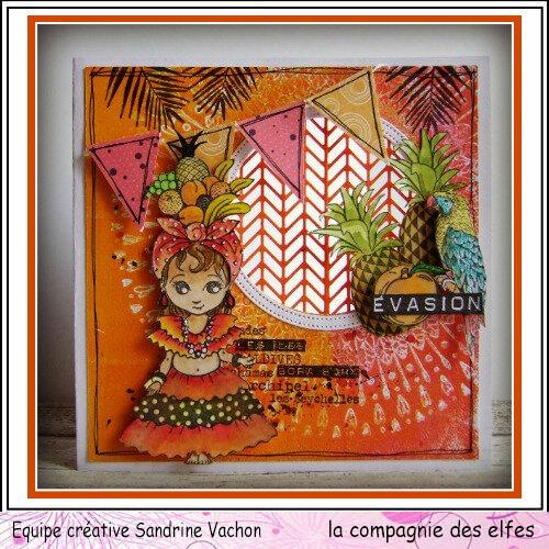 Sandrine VACHON juillet DT LCDE (1)