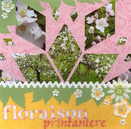 001_floraison_printaniere_I