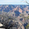 a - Grand Canyon (12)