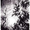 La grotte v1