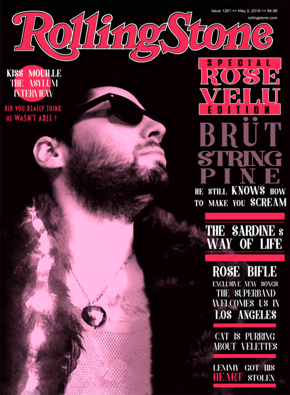 Rolling Stone Cover copie