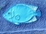 poisson applique1