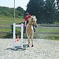 Jeux équestres manchots 2013 (254)