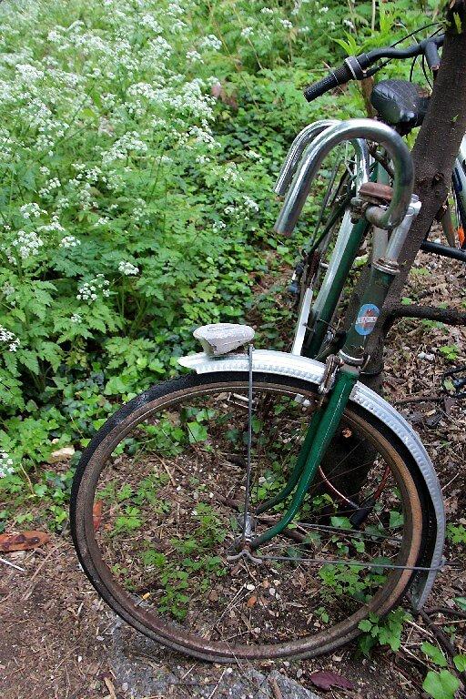vélo végétal_2512