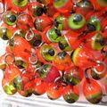 graines-perles11