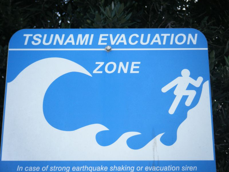 attention tsunami