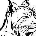 Autocollant lynx - faune sauvage - je ralentis