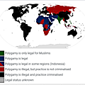 Legality of polygamy