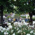 Festival des Roses 2009 (63)