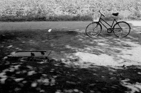 bicycle_1