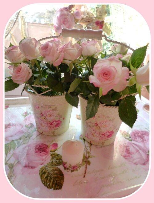 Shabby roses 2 modifiée