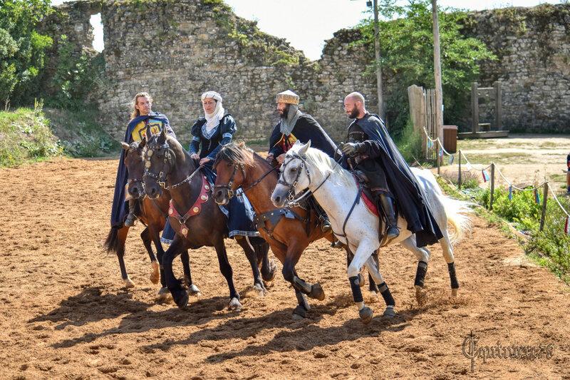 Les premiers seigneurs de Talmont Saint Hilaire (5)