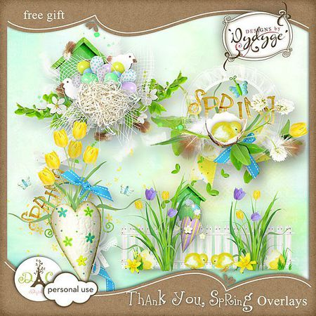 preview_overlays_thankyouspring_dydyge