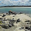 Vacance en Bretagne 08-2012 033