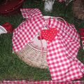 table picnic 005