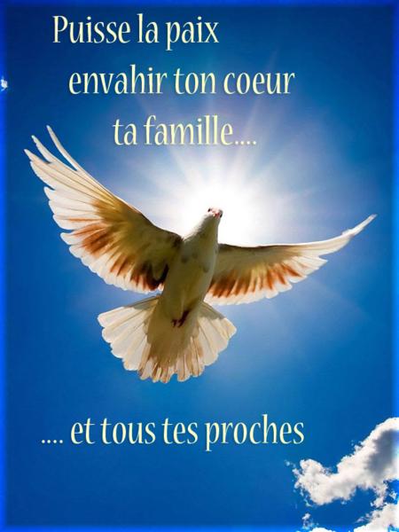 paix_citation