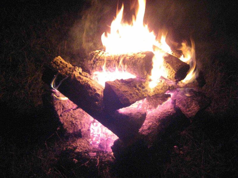 le bois et le feu