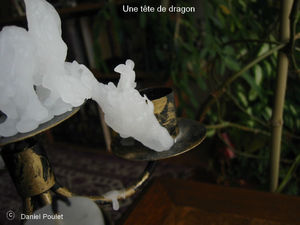 Une tête de dragon 1