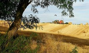 empreintes rurales sur Ipernity (41)