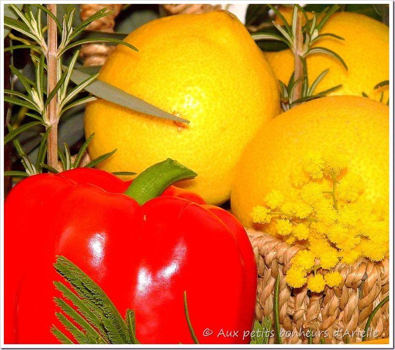 Premier mimosa (10)