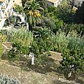 Ne pas confondre: jardin méditerranéen et jardin exotique