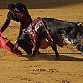 Séville - Corrida du 9 mai 2014