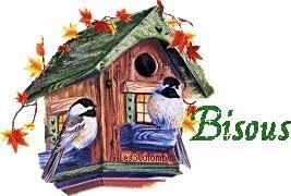 """Résultat de recherche d'images pour """"gif bisous oiseaux"""""""