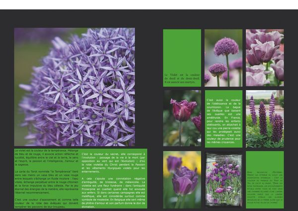 GardenColours1_Page_10