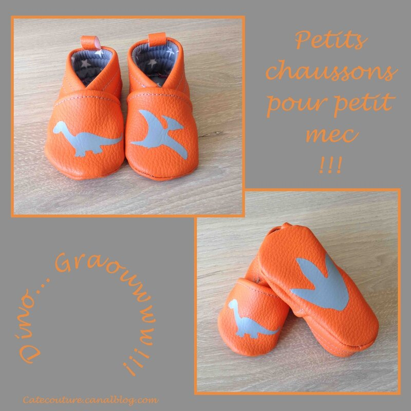 chaussons_dino