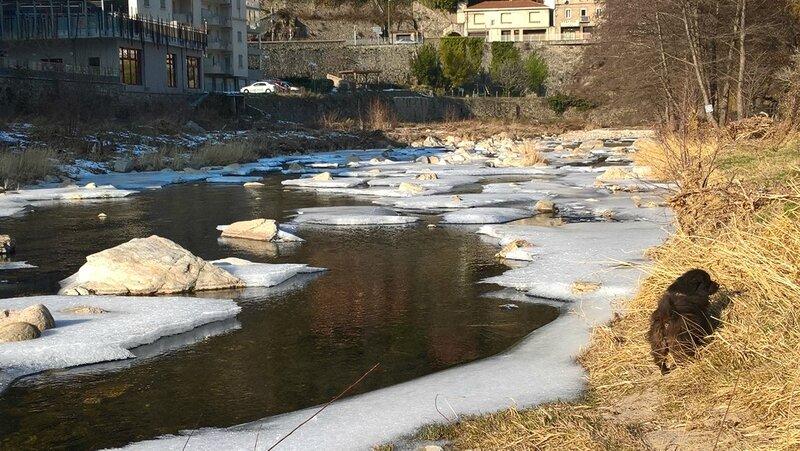 gibbs et la neige (2)