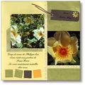 jardin page19
