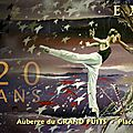 Exposition cité de carcassonne (france) été 2014