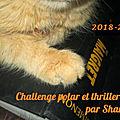 Challenge thrillers et polars 2018/2019