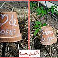 Les étiquettes du jardin (2)