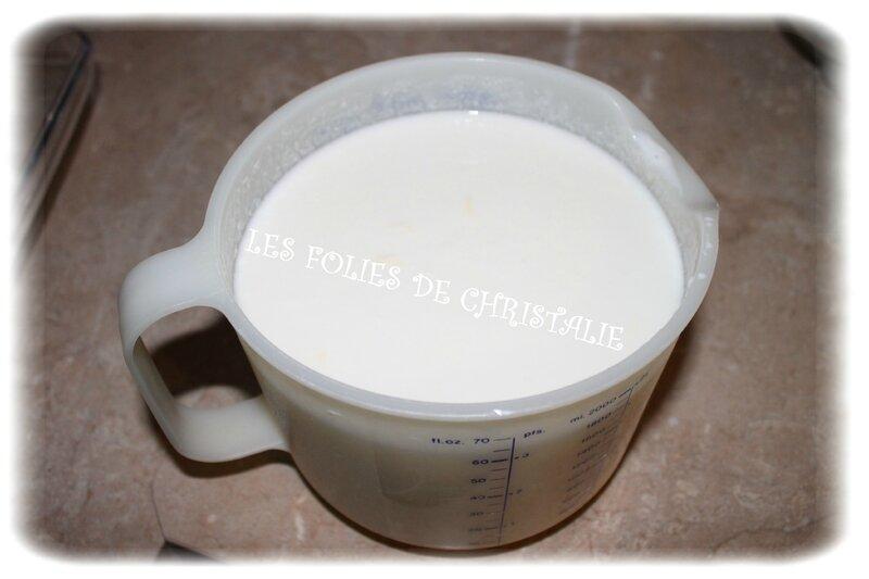 Lait fermenté 6