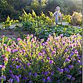 Windows-Live-Writer/Jardin_10232/DSCN0738_thumb