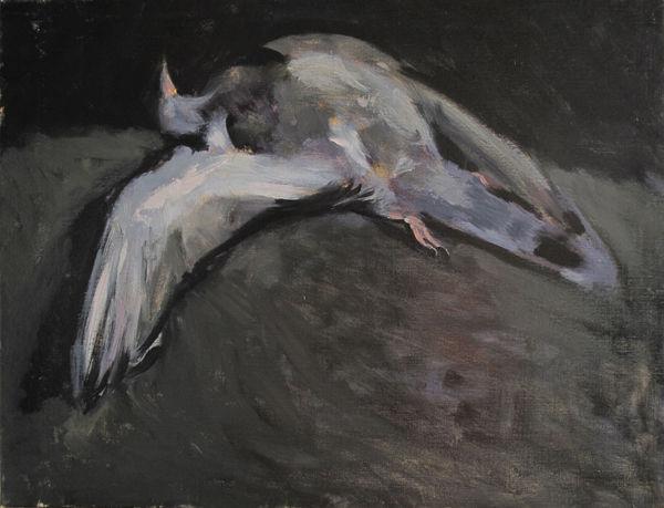 Pigeon_mort_65x50cm1