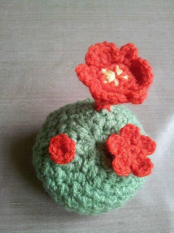 fleur de cactus 5