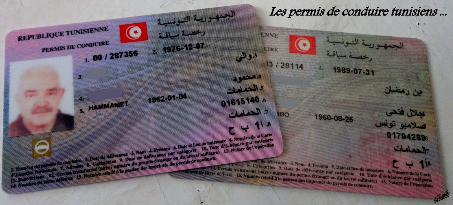 le nouveau permis de conduire fran ais vu d 39 hammamet a hammamet au pays du jasmin. Black Bedroom Furniture Sets. Home Design Ideas