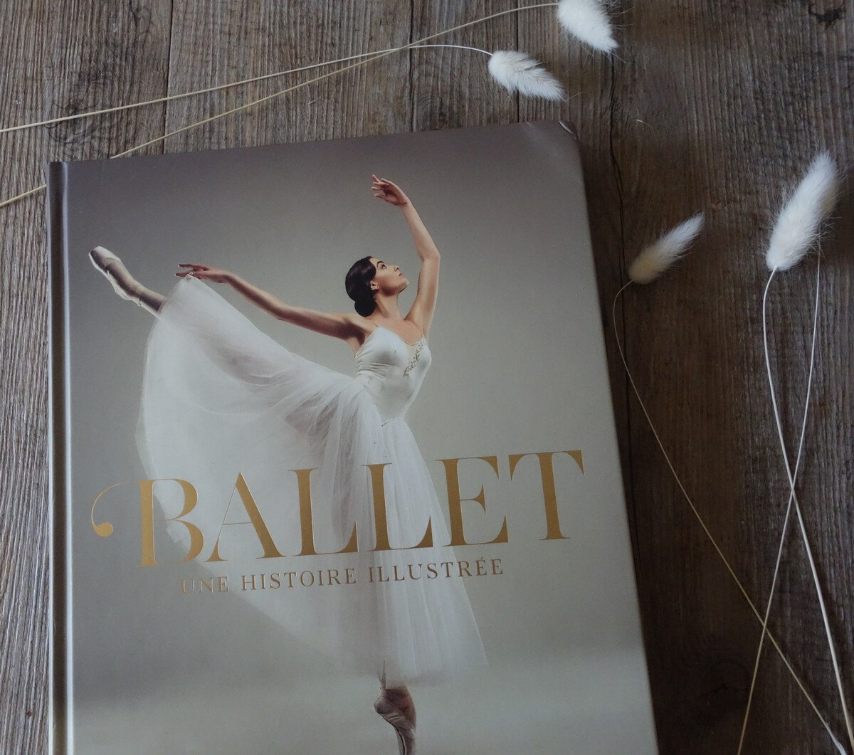 Selections De Beaux Livres Sur L Art Danse Classique Et