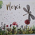 ameliebiggslaffaiteur_carte_merci_libellule_bd