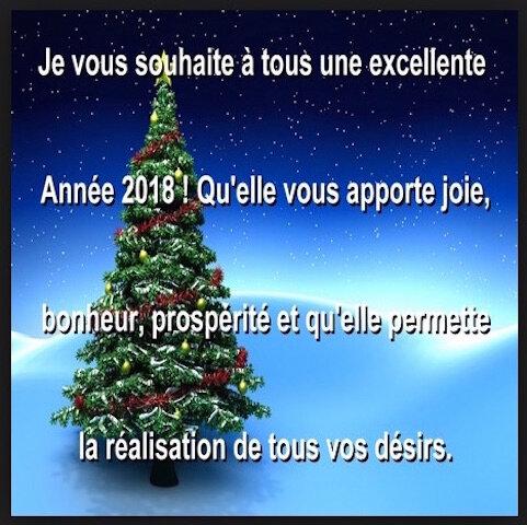 bonne annee 2018 1