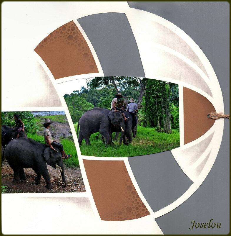 Le bain des éléphants 3