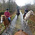 Balade à cheval dans la forêt P1080187