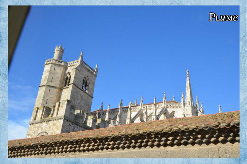 11 cathédrale