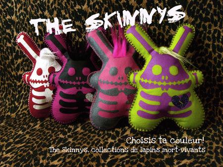 pr_sentation_the_skinnys