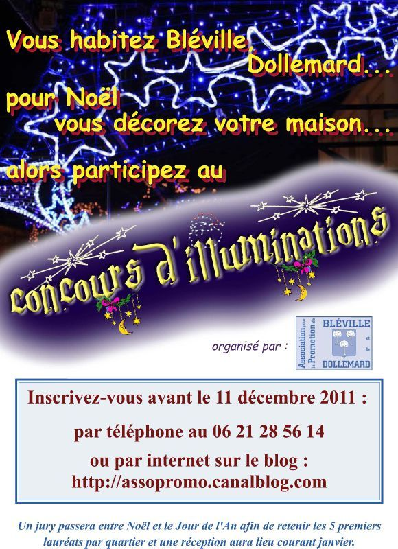 affiche illuminations 2011 copie